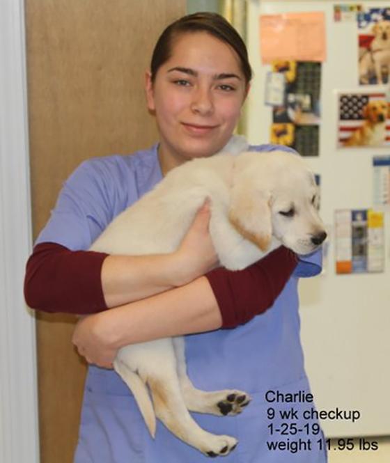 charlie vet1